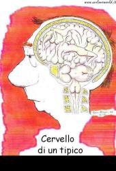 cervello_uomo