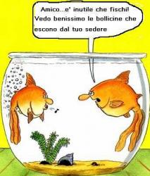 vignette_divertenti_pesci