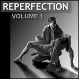 reperfection_cover_smallrectangle